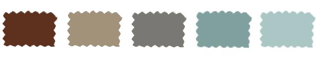 amerykanski zigolak -kolorysttyka