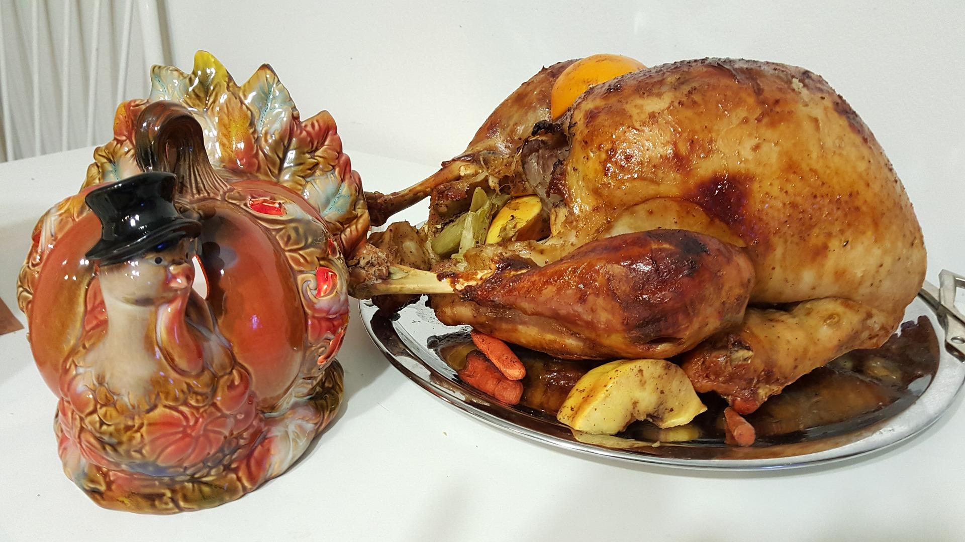 Indyk na Dzień Dziękczynienia