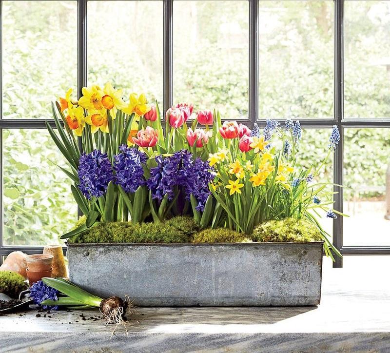 Wiosenne dekoracje w domu