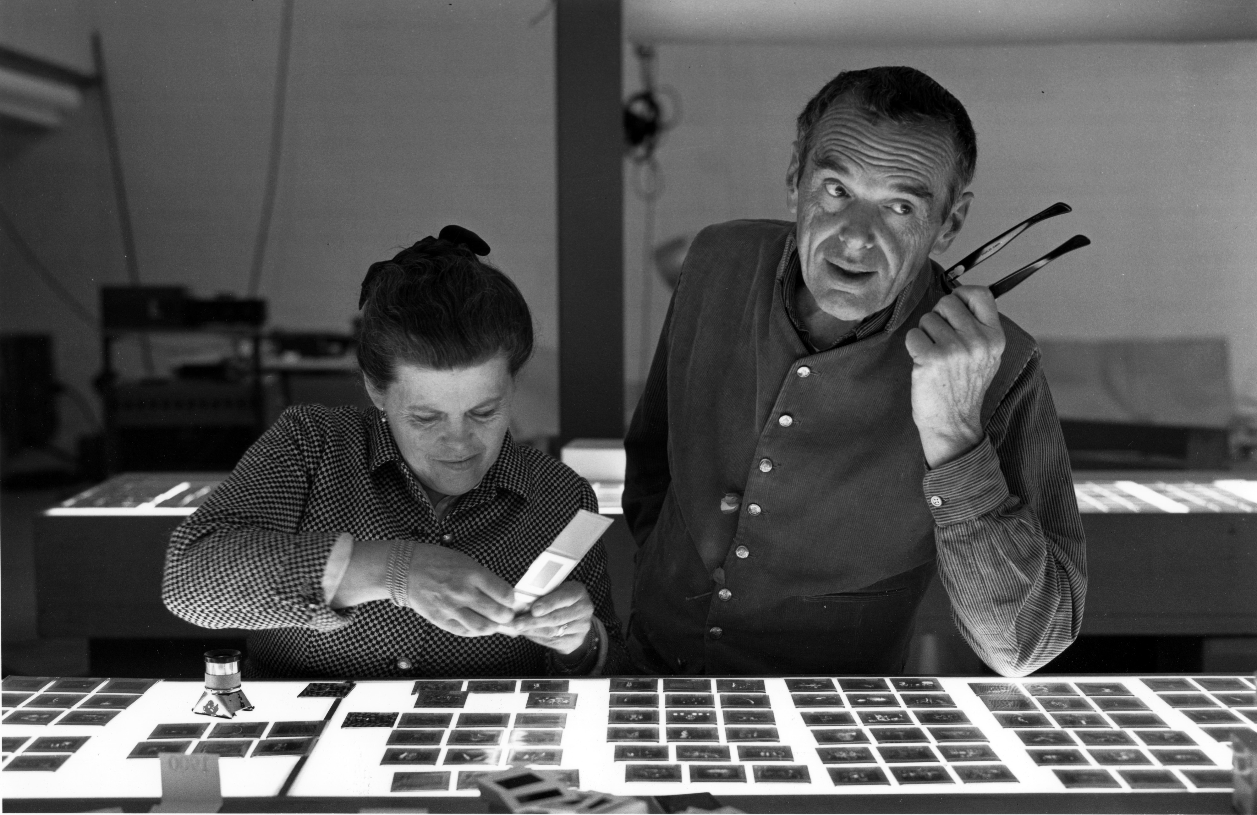 Eames Ray i Charles - amerykańscy projektanci design