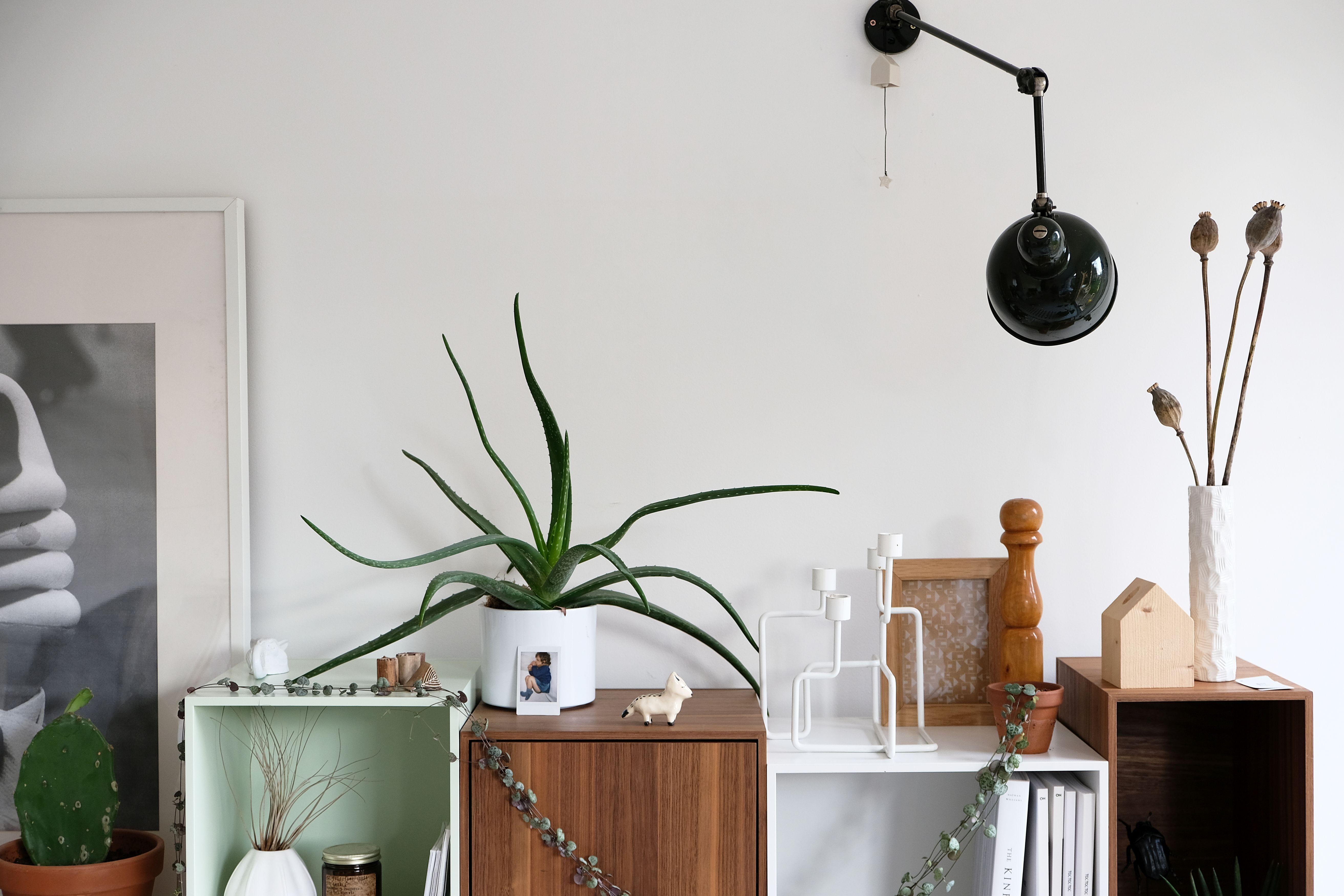 Nowoczesne dekoracje na komodę w salonie