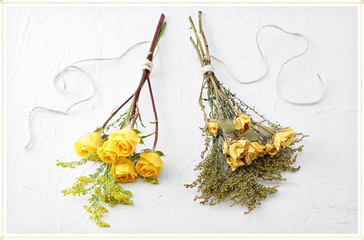 Trend: suszone kwiaty w domu w nowoczesnym wydaniu