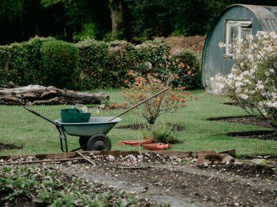 Funkcjonalny ogród przydomowy - czego nie może w nim zabraknąć?